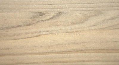 light-walnut-natural-wavy-pattern-wood-cut-closeup-background-170672927